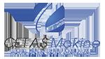Cetaş Makine Logo